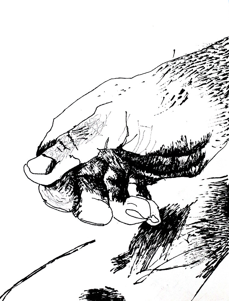 Drawing Of Hand By Raphael Perez Sketch Hands Drawings Sketches Ink On Paper