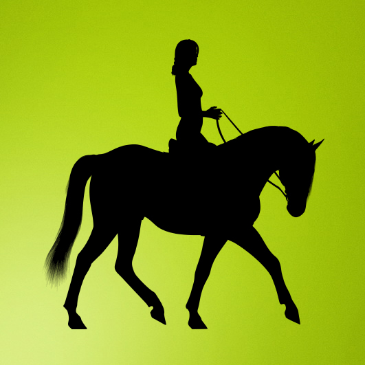 Girl riding horse silhouette vector
