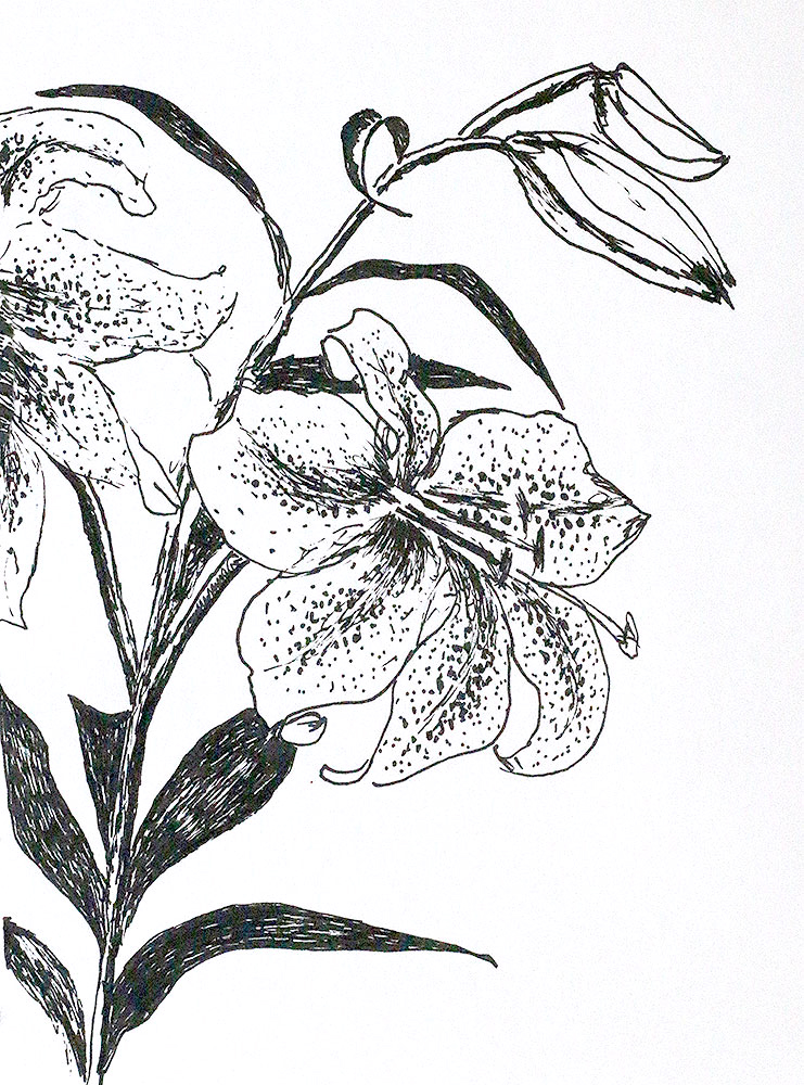 Lili Flower