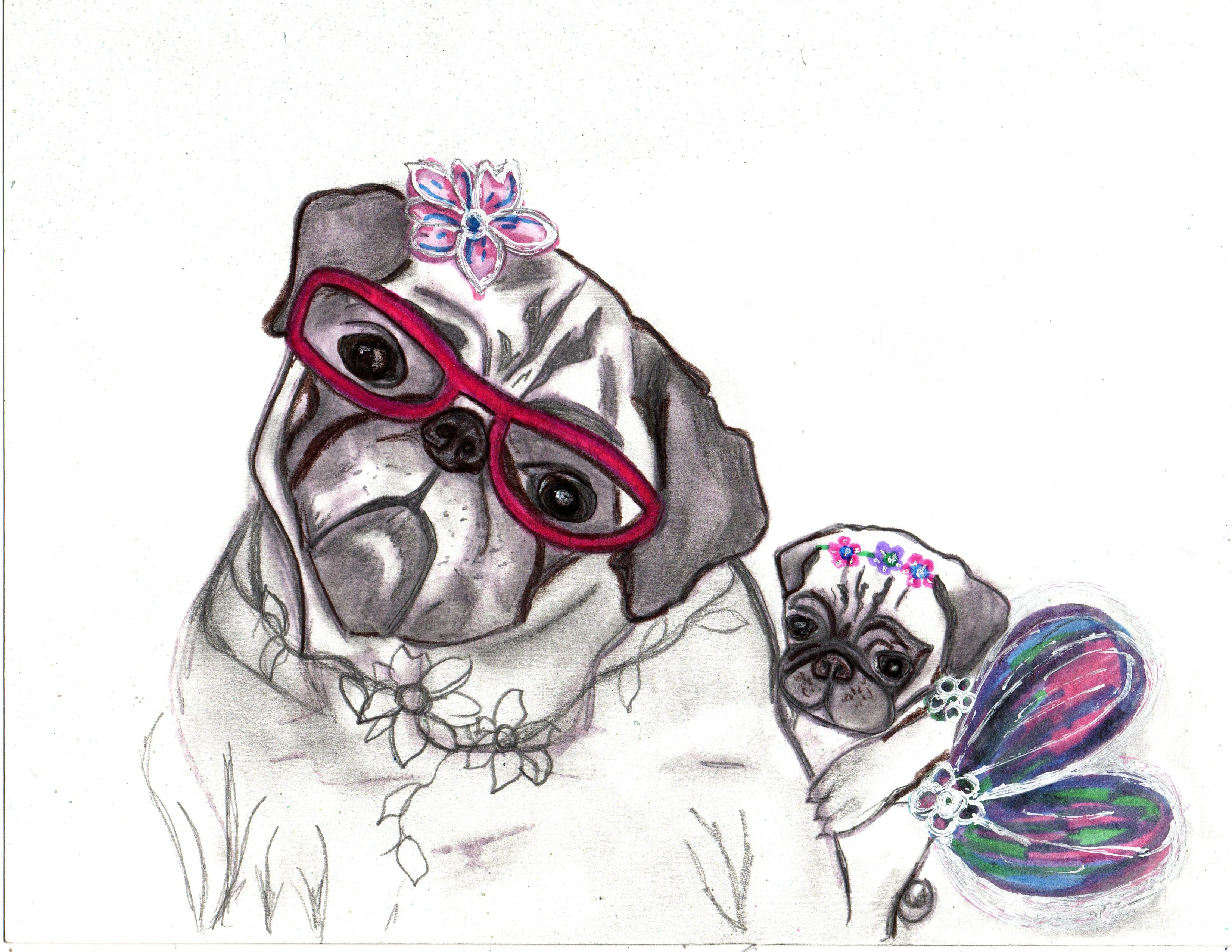Pug grandma and granddaughter