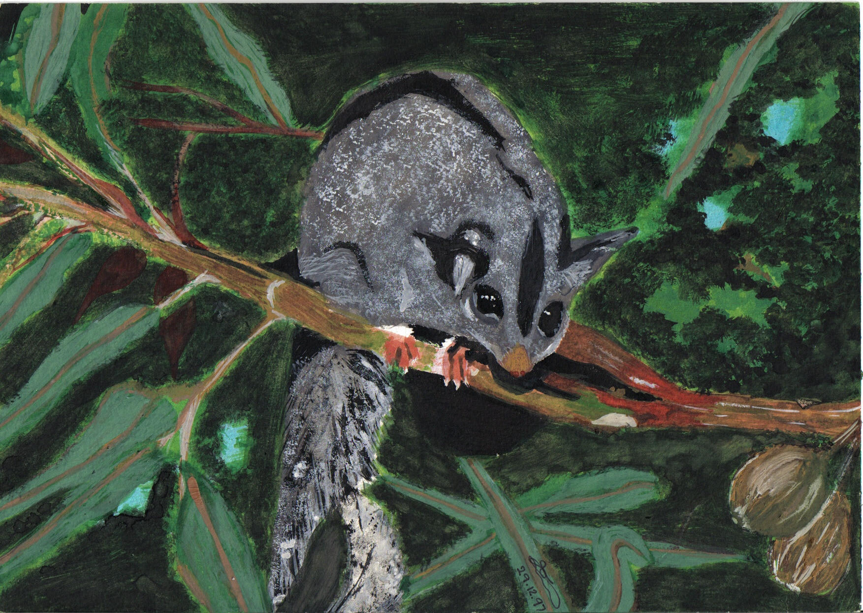 Painting of a possum I did in a tree at our house
