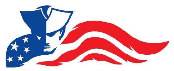 School Logo IHS