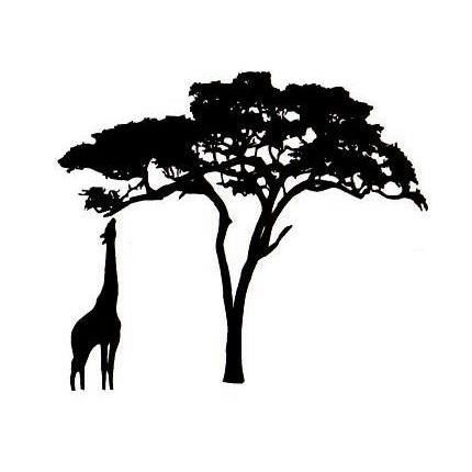 430x430 Giraffe And Acacia Tree Silhouette Um African Rubber Stamp No.17