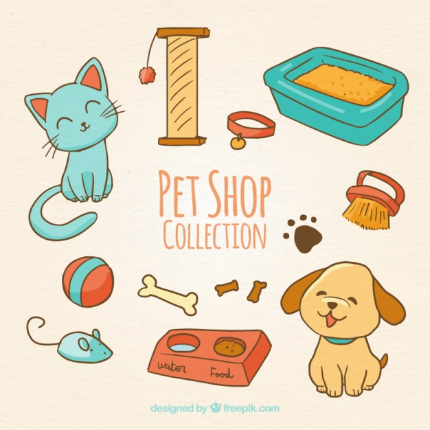 626x626 Cute Animals With Accessories Vector Free Download