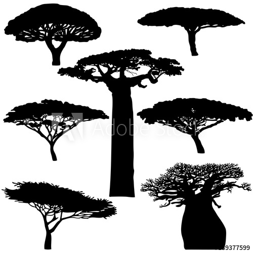 500x500 Black Silhouette Various Of African Trees On A White Background