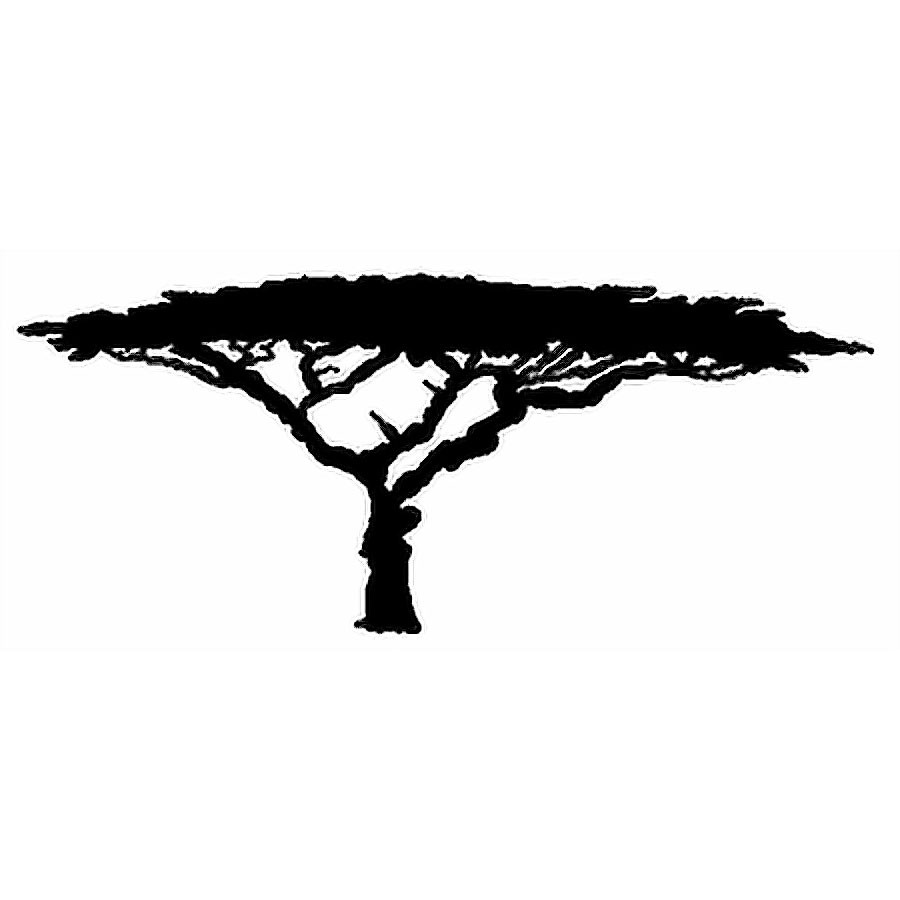 900x900 Acacia Tree Silhouette Clipart