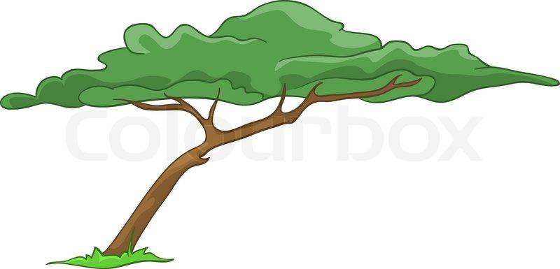 800x385 Cartoon Illustration Tree Isolated On White Background Stock
