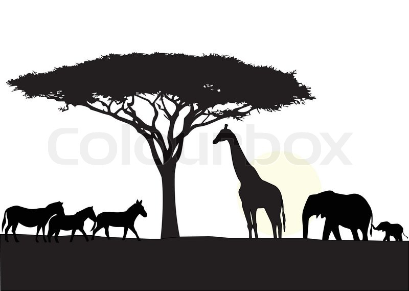 800x569 Africa Silhouette Background Stock Vector Colourbox
