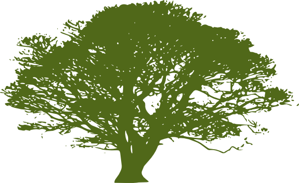 600x368 African Tree Olive Green 2 Clip Art