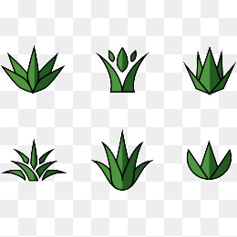 260x261 Agave Png, Vectors, Psd, And Clipart For Free Download Pngtree