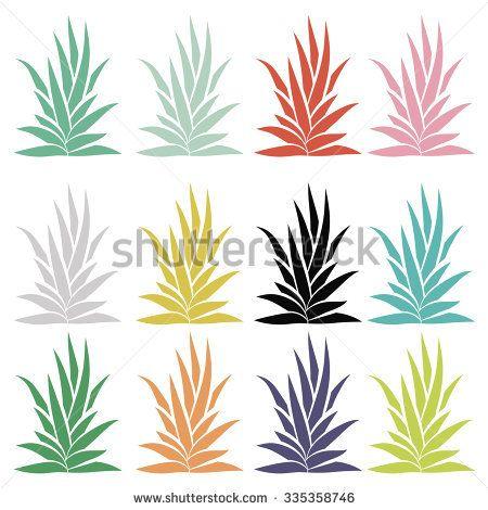450x470 Agave Bush Set Isolated On White Background. Aloe Vera, Succulent