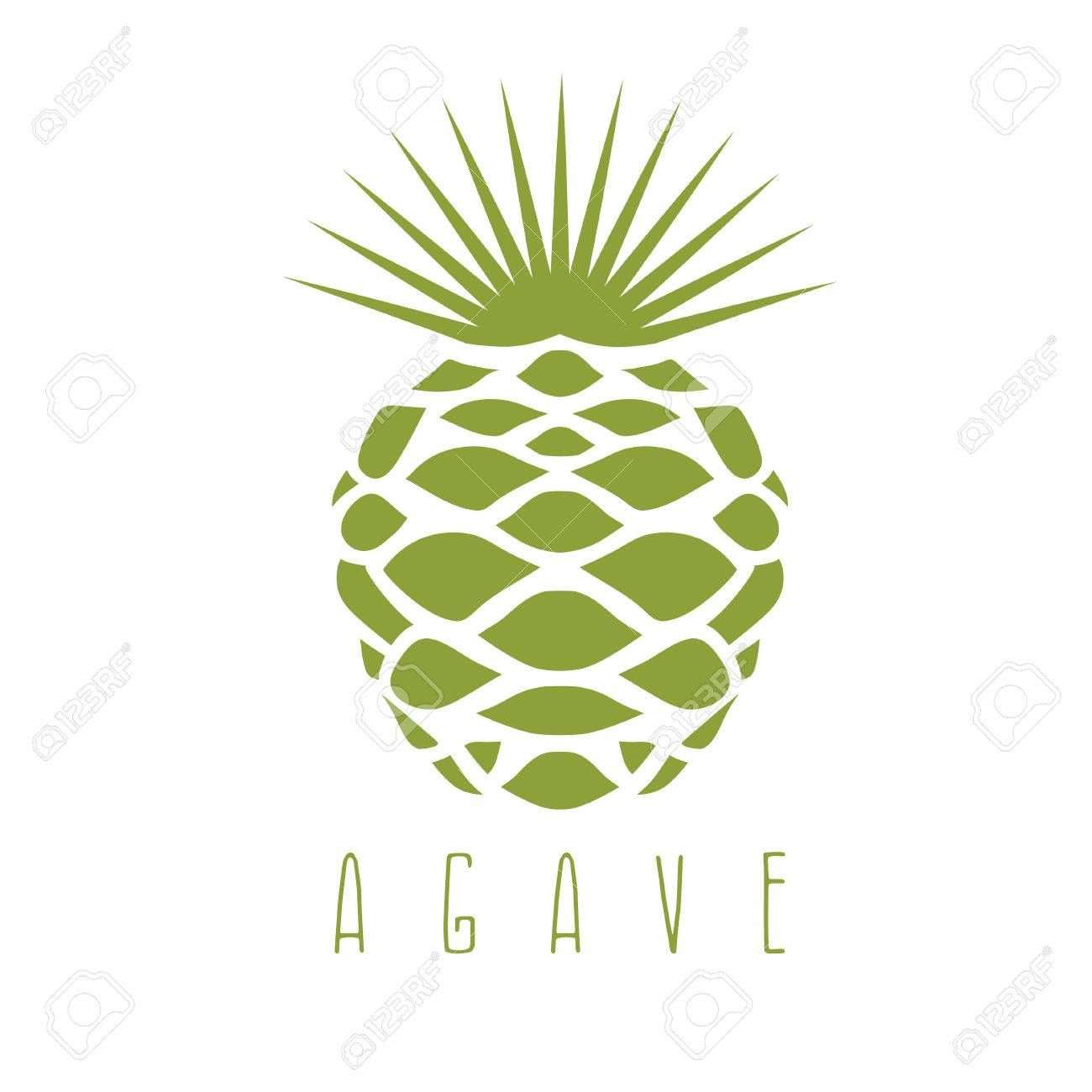 1300x1300 Vector Design Template Of The Agave Plant Stock Vector