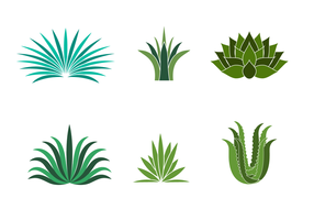286x200 Agave Plant Free Vector Art