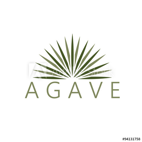500x500 Agave Vector Design Template