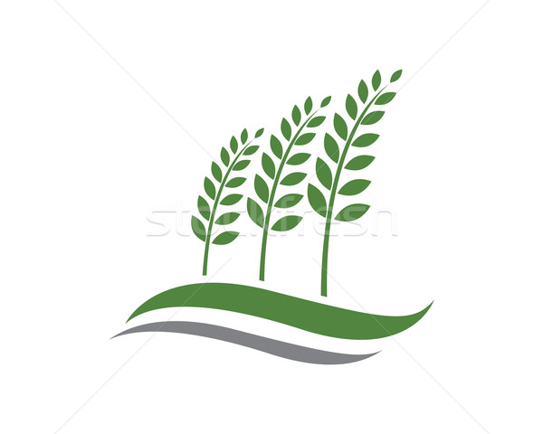 600x480 Agriculture Logo Vector Illustration Dar Woto (Ggs) ( 6414163