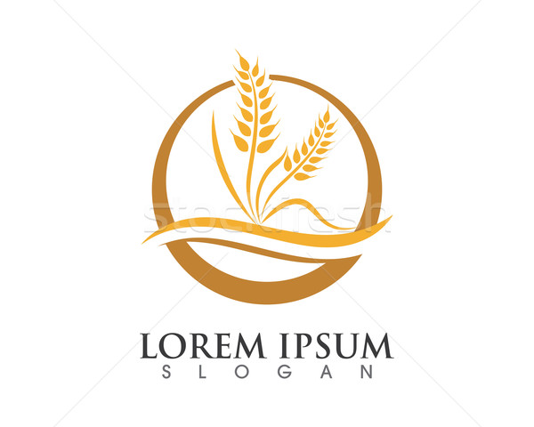 600x480 Agriculture Logo Vector Illustration Dar Woto (Ggs) ( 6989138