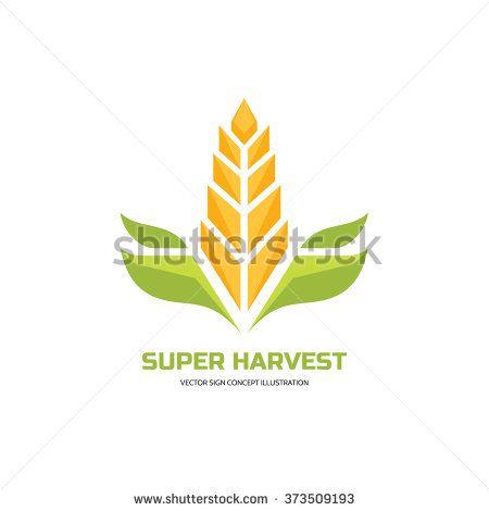 450x470 Super Harvest