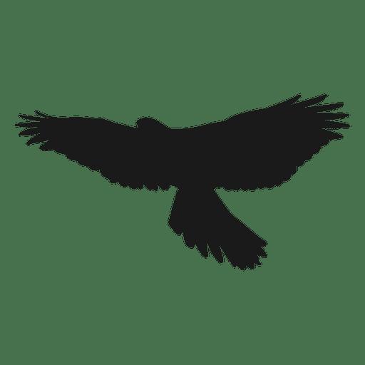 Aguila Vector