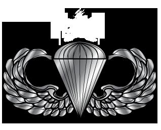 Airborne Wings Vector