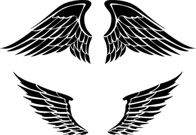 626x432 Set Of Two Wings Designs Vector Free Download