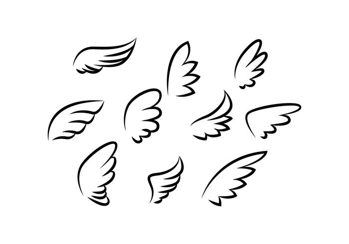 700x490 Wings Collection Line Vector