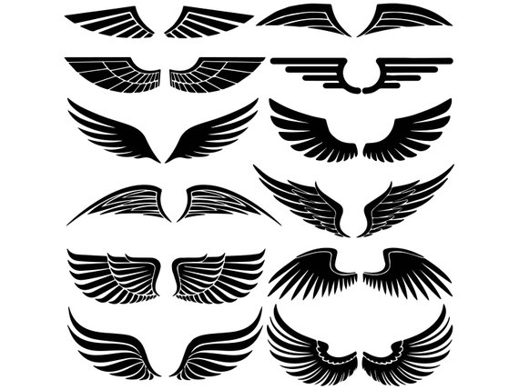 570x429 Wings Feather Angel Heaven Decoration Freedom Flight Alas Etsy