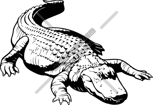 500x345 Alligator Laying Docile Clipart And Vectorart Animals