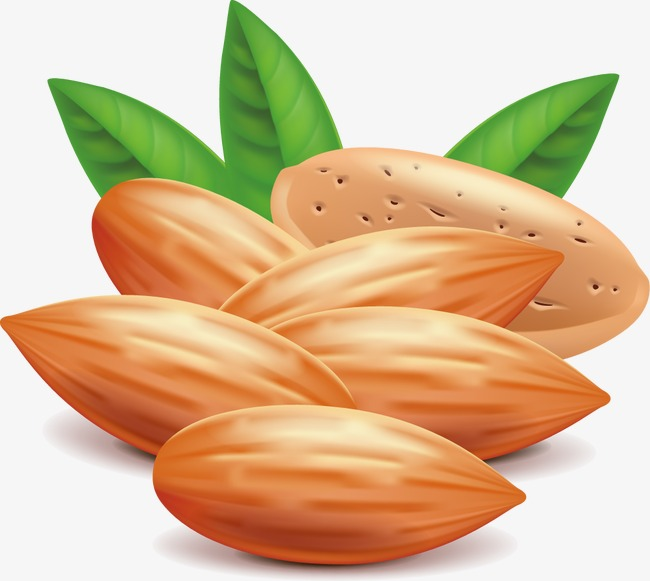 650x581 Almond, Nut, Fruit Png And Vector For Free Download