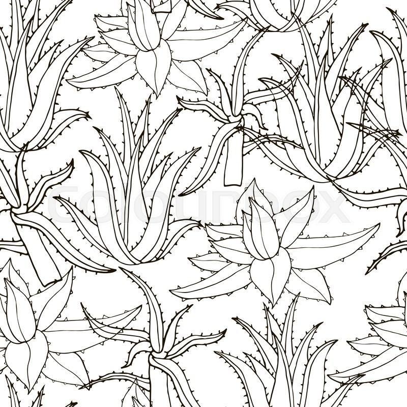 800x800 Seamless Vector Pattern With Aloe Vera. Creative Hand Drawn