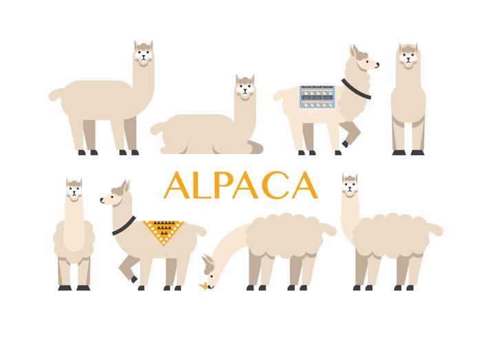 700x490 Alpaca Vector Icons