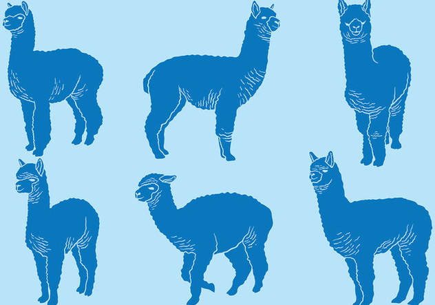 632x443 Free Alpaca Icons Vector Free Vector Download 403031 Cannypic