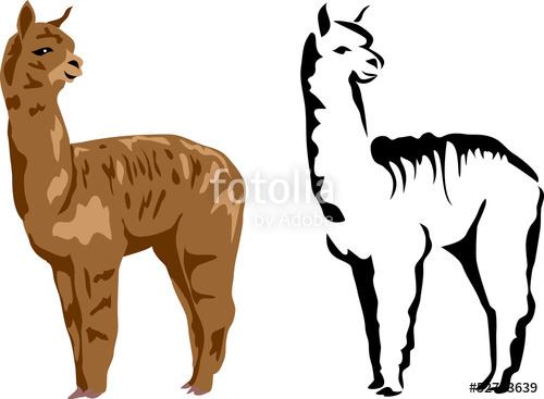 500x367 Llama Alpaca Stock Image And Royalty Free Vector Files On Fotolia
