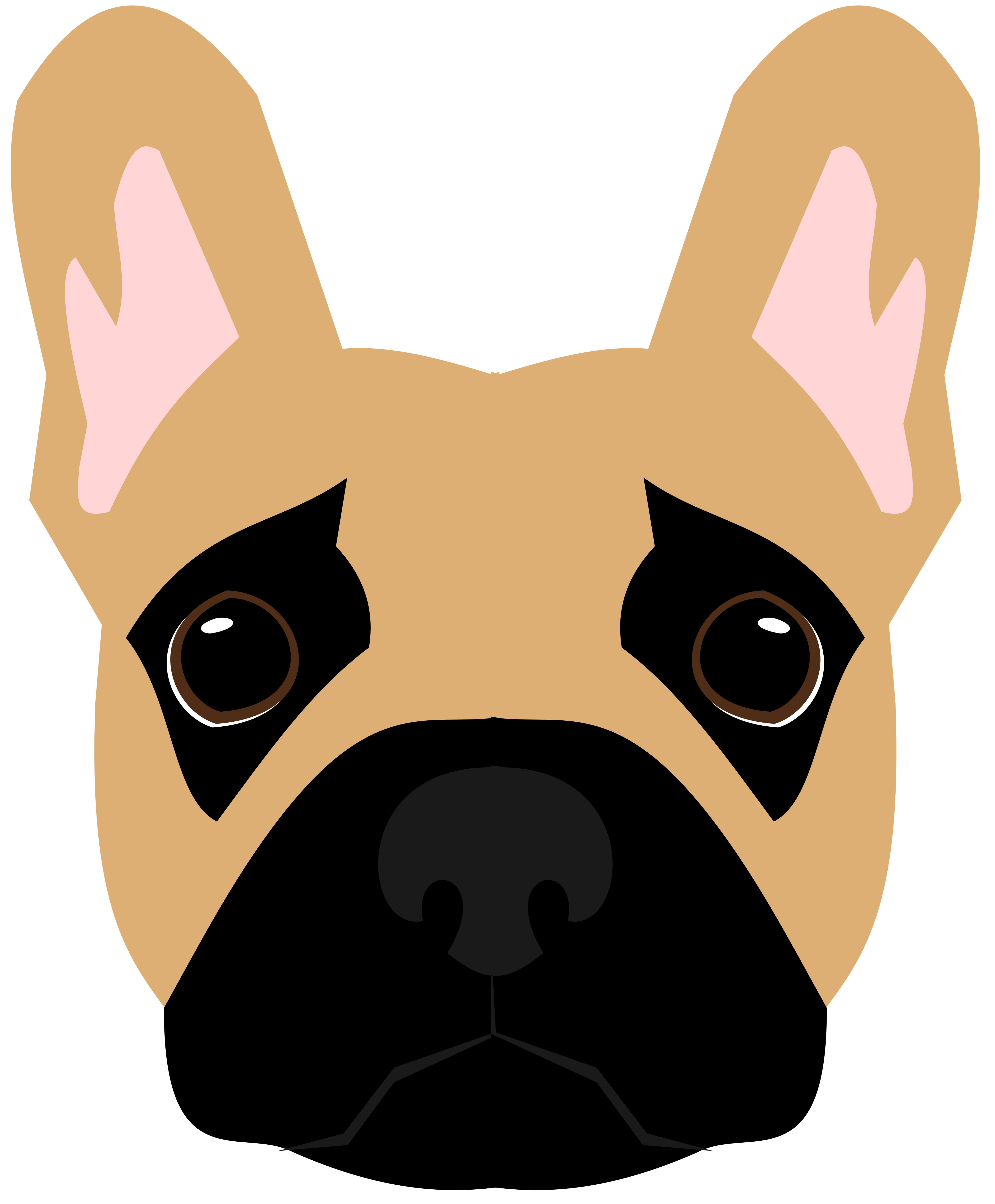 5184x6272 Dogs Clipart American Bully, Dogs American Bully Transparent Free