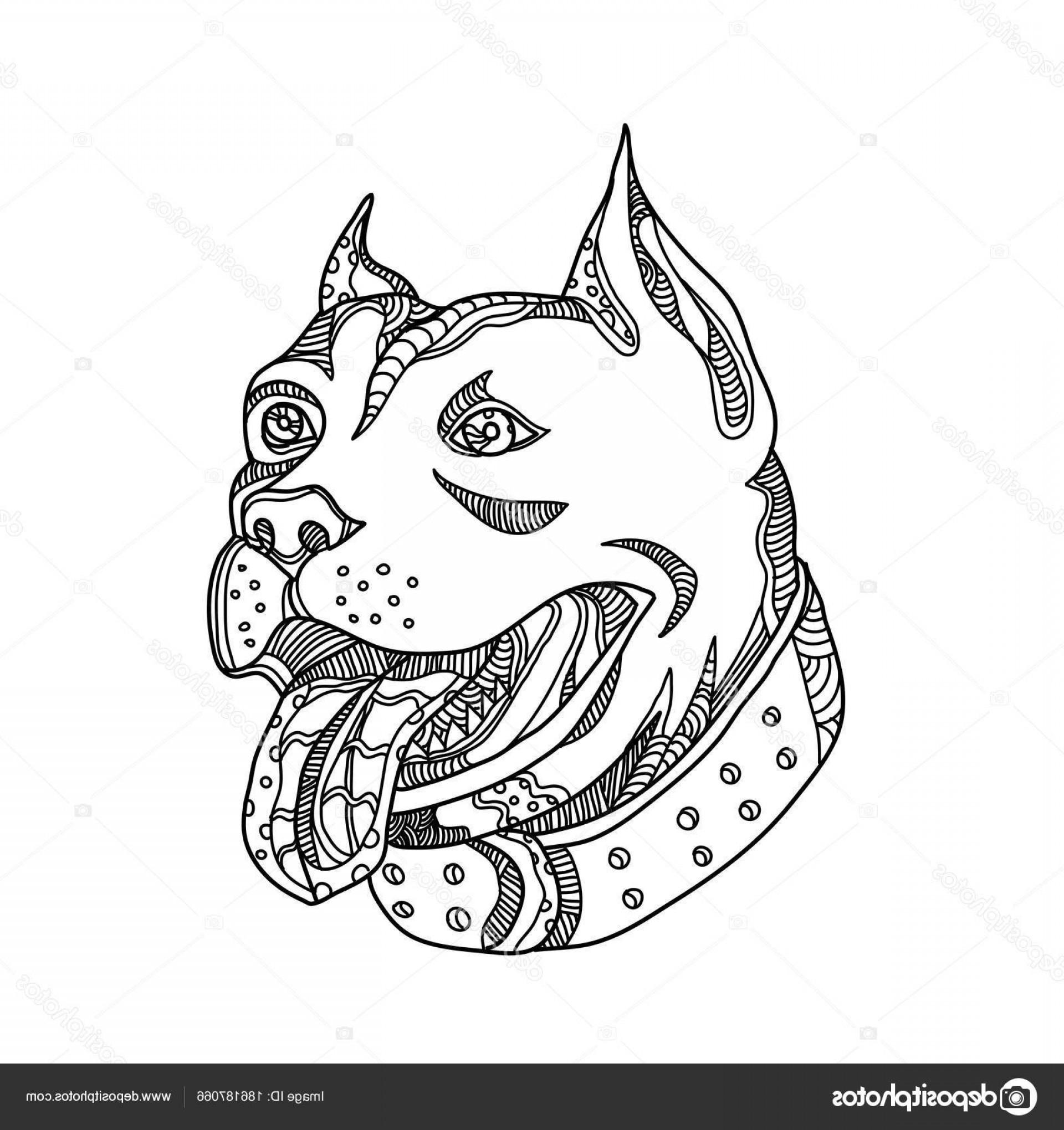 1920x2040 Stock Illustration Pit Bull Head Doodle Art Shopatcloth
