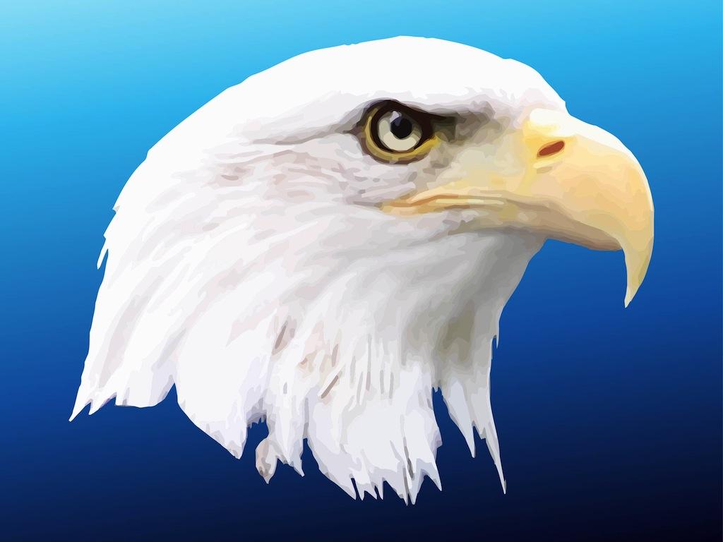 1024x768 American Eagle
