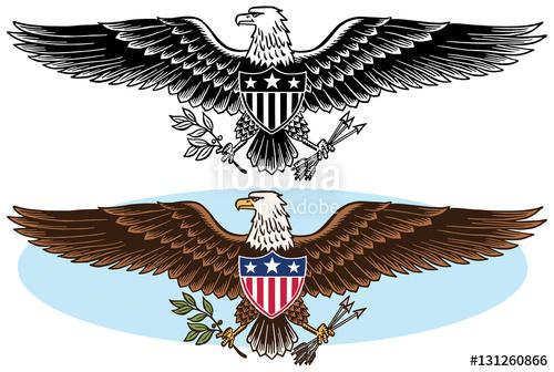 500x336 American Bald Eagle Patriotic Symbol Stock Image And Royalty Free