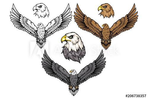 500x334 American Eagle Set. Bald Eagle Logo. Wild Birds Drawing. Head Of