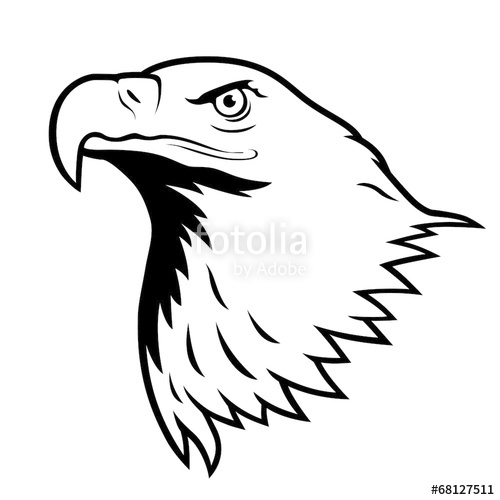 500x500 Bald Eagle, American Eagle. Stock Image And Royalty Free Vector