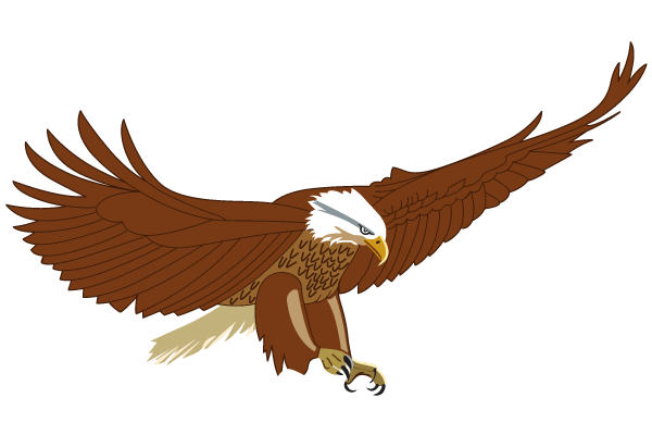 600x400 Flying American Eagle Vector Image 123freevectors