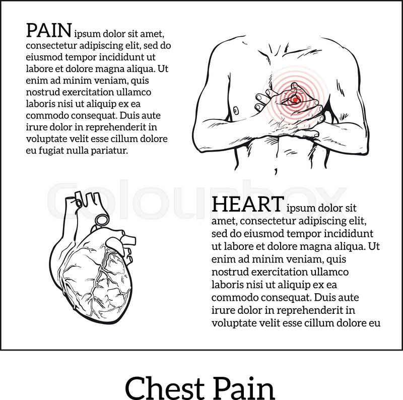 800x794 Information About Heart Pain, Chest Pain In Men, Anatomical Image