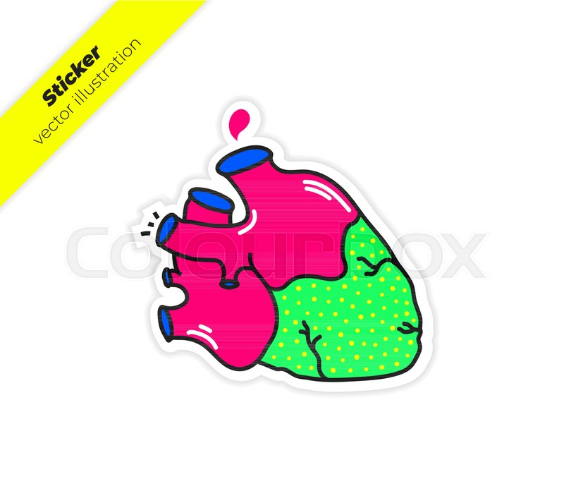 800x713 Real Anatomy Heart With Aorta, A Drop Of Blood Sticker Vector
