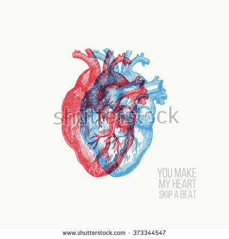 450x470 Valentines Day Card. Anatomical Heart. Vector Illustration Tell