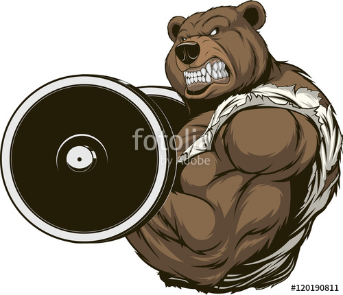 500x430 Angry Bear Athlete Stock Image And Royalty Free Vector Files On