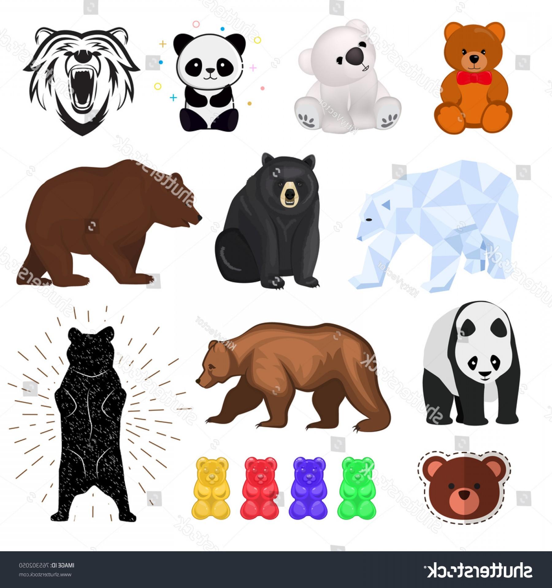 1800x1920 Bear Vector Wild Animal Angry Brown Shopatcloth