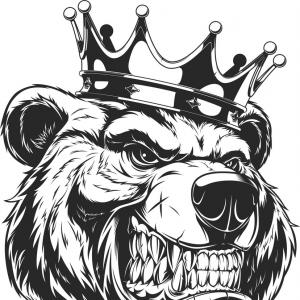 300x300 Best Angry Bear Vector Library Shopatcloth