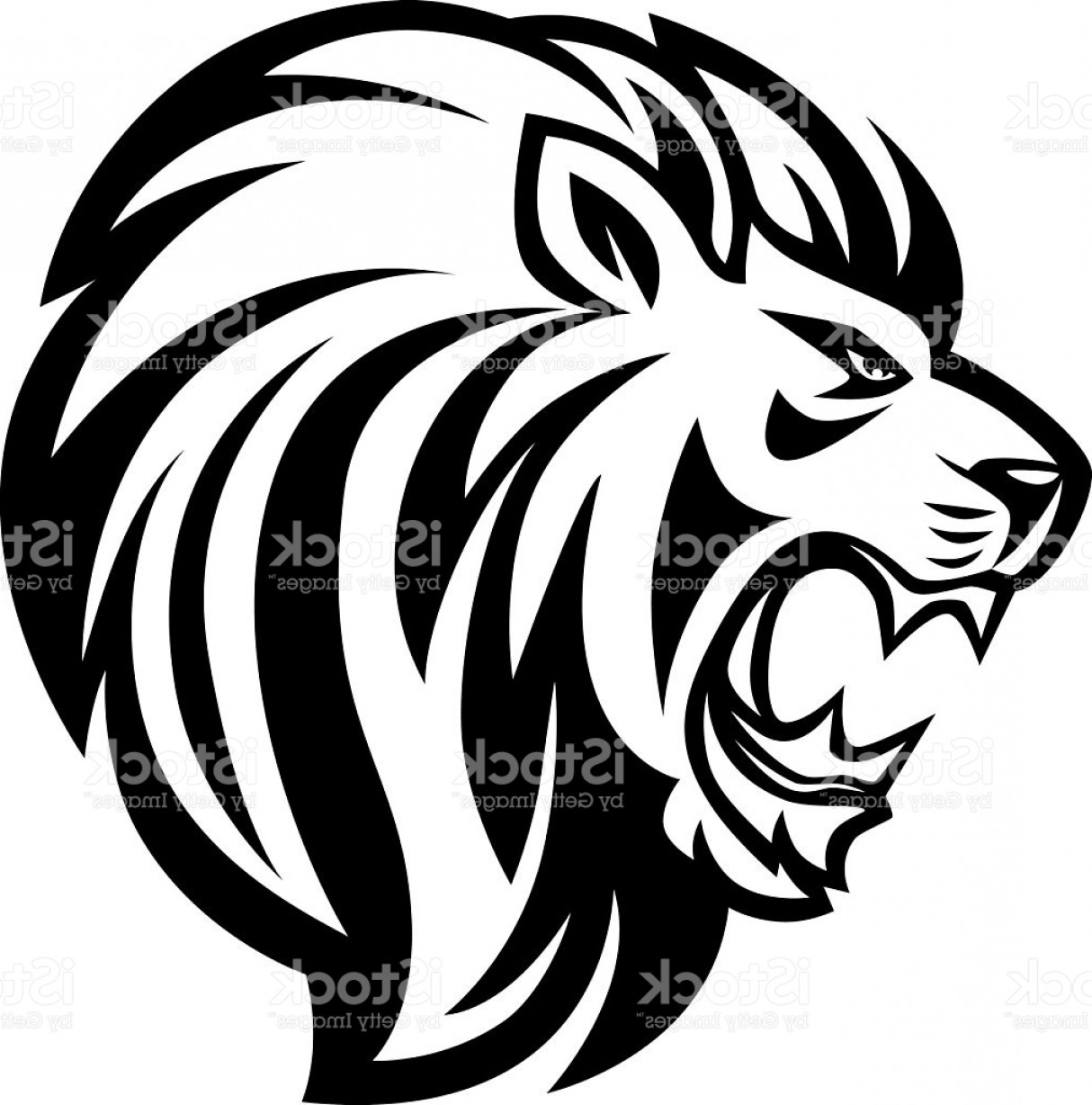 1214x1228 Cool Lion Vector Arenawp