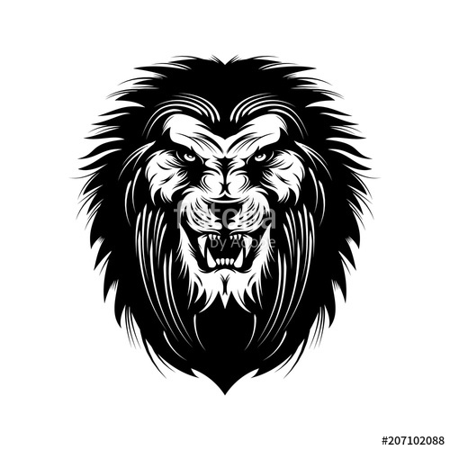 500x500 Angry Lion Head Vector Illustration Stock Image And Royalty Free