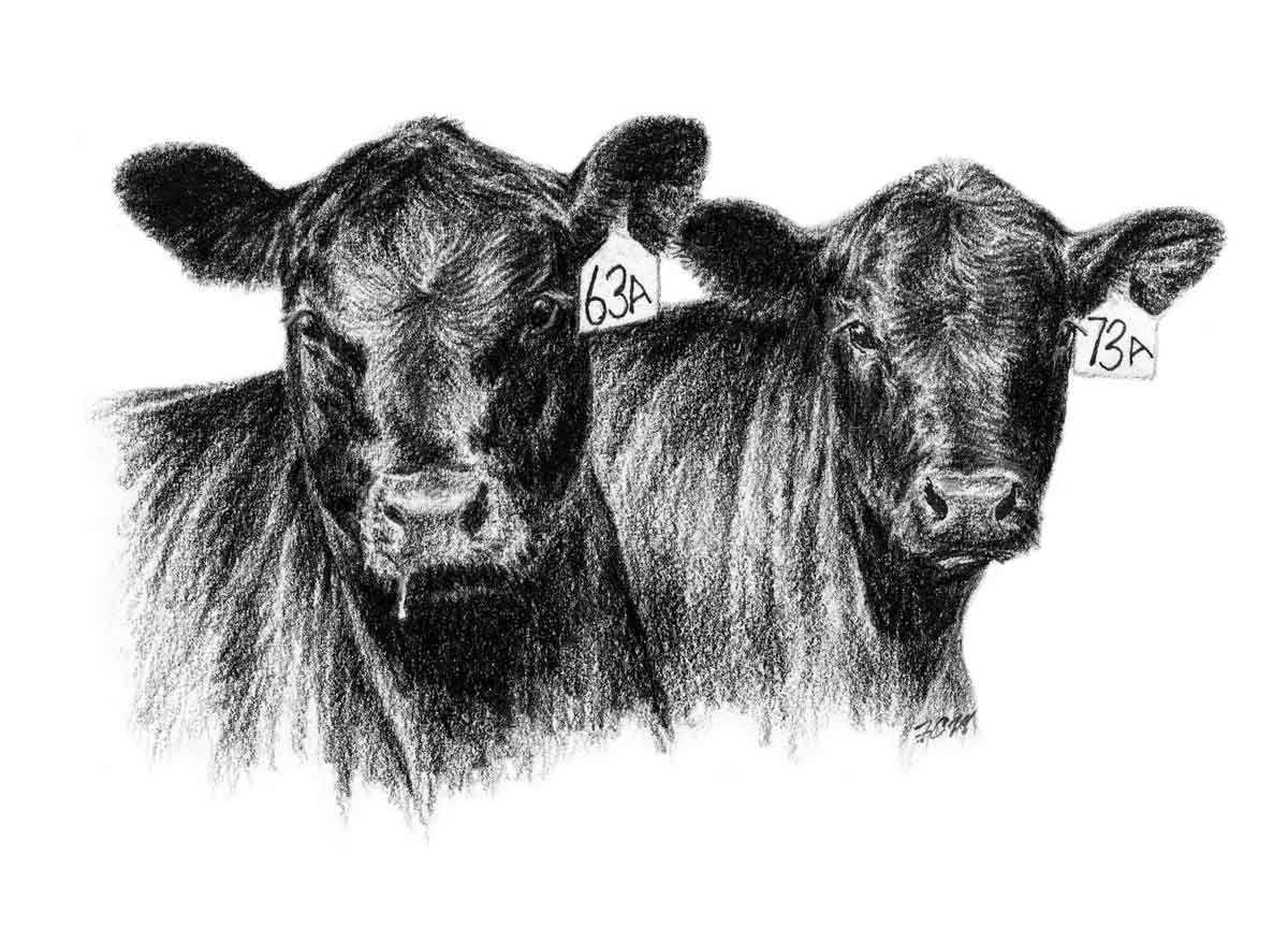 1200x863 Angus Clip Art Cows Clip Art And Cow