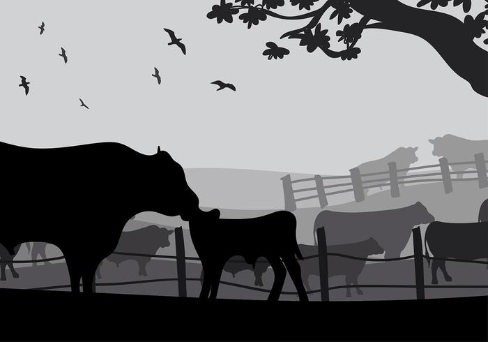 700x490 Angus Cow Silhouette Free Vector