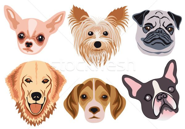 600x420 Image Result For Animal Face Vector Animal Silhouettes, Vectors